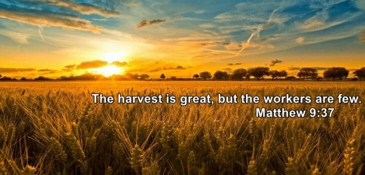 spiritual harvest is great, the harvest is plentiful, the harvest is great, follow jesus be fishers of men, fisher of men, follow jesus, pursuing intimacy with god, pursuing intimacy with god book, pursuing intimacy with god bible studies, jesus, jesus christ, intimacy with god. pursuing intimacy with god, prayer, worship, bible, bible study, bible studies, hear gods voice, gods will, know god, relationship with jesus, jesus christ, disciples, discipleship, worship, true worship, praise, prayer, why pray, powerful prayer, gods plans, gods purpose, praisegod, revival, spiritual revival, spiritual awakening, missions, mission trips, successfully share christ, share jesus