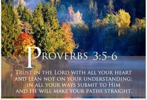 proverbs 3 5-6, trust god, trust god with all your heart, faith, faith in god