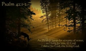 psalm 42 1-2, psalm 42, as a deer pants, seek god with all your heart, seek god, seeking god, hunger for god, thirst for god, passion for god