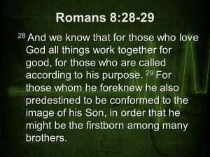 romans 8 28-29, praising god, worship god, in all things, god is good, god's goodness, god's purpose