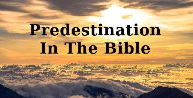 predestination in the bible, predestination, predestination salvation, salvation, the elect, god wants all to be saved