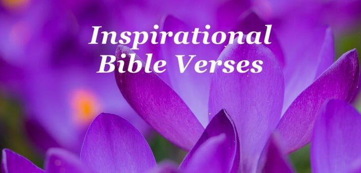 inspirational bible verses, inspirational bible verses & quotes, inspirational bible quotes, encouraging bible verses, inspirational, inspirational scriptures, encouraging scriptures
