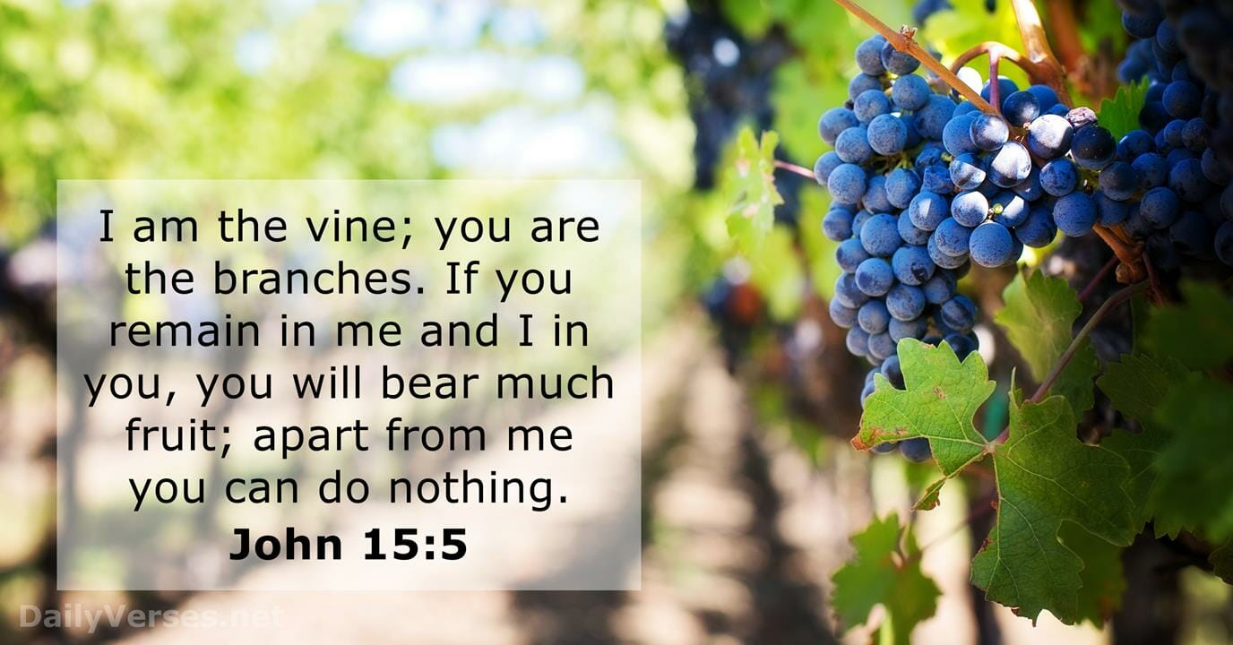 How To Be A Fruitful & Victorious Christian