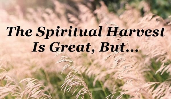 spiritual harvest is great, the harvest is great, the harvest is plentiful, matthew 9 37, evangelism